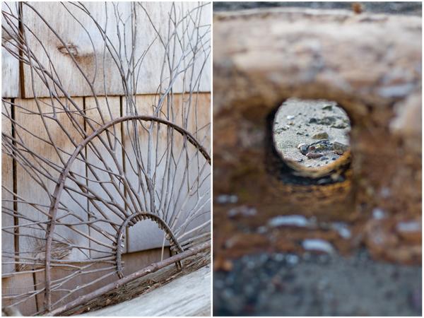 art-&-driftwood